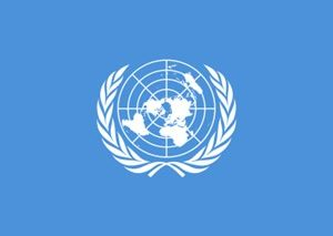 united-nations-access-and-related-resources