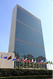 united-nations-negotiating-guide